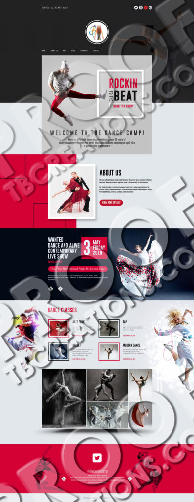 The Dance Camp – Website Mockup